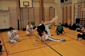 capoeira-meeting-copenhagen-2010-0387